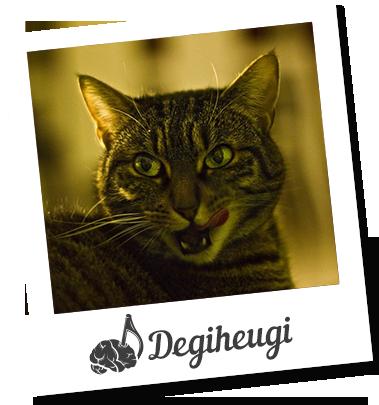 selfie degiheugi